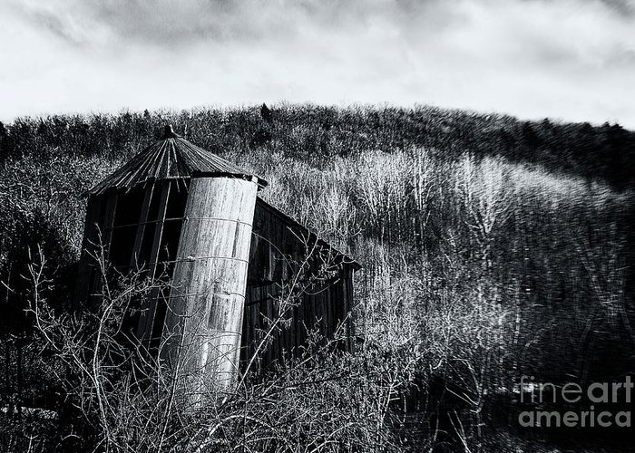 Silo Greeting Card featuring the photograph Gracefully by Grant Dupill