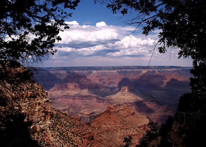 Grand Canyon Greeting Card featuring the photograph Grand Canyon II by Linda Morland