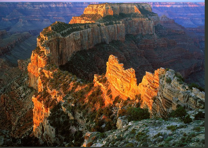 Usa Greeting Card featuring the photograph Grand Canyon North Rim by Johan Elzenga