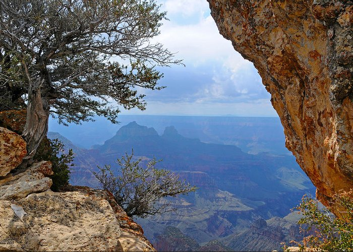 Grand Canyon North Rim Greeting Card featuring the photograph Grand Canyon North Rim Window in the Rock by Victoria Oldham