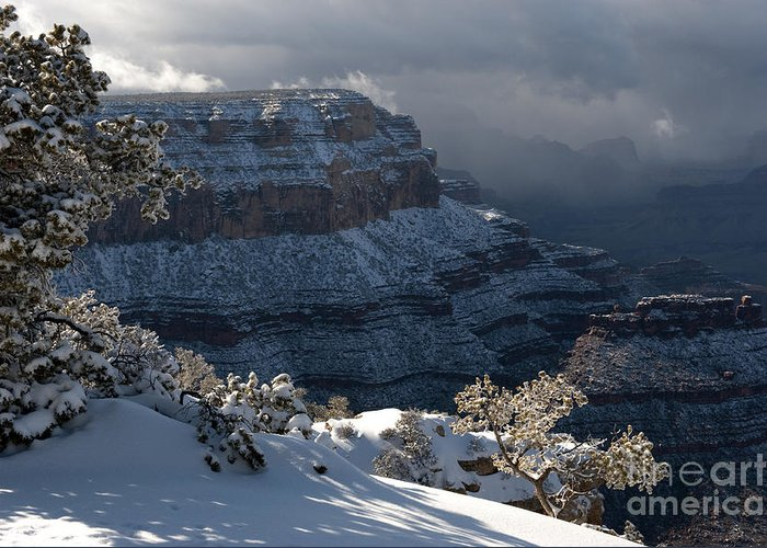 Grand Canyon Greeting Card featuring the photograph Grand Canyon Storm by Sandra Bronstein
