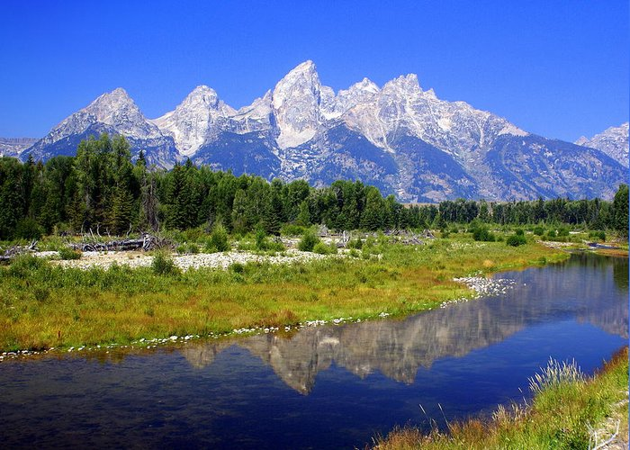 Grand Teton National Park Greeting Card featuring the photograph Grand Tetons by Marty Koch