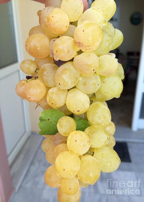 Clusters Of Grapes Digital Art Greeting Cards