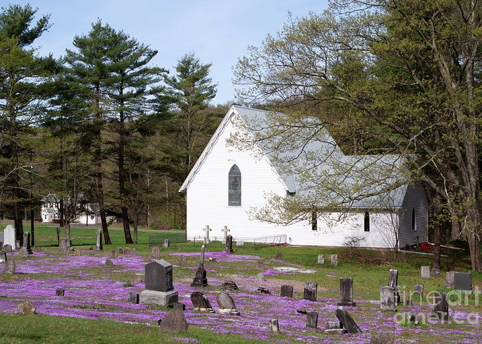 Church Greeting Card featuring the photograph Graveyard Phlox Country Church by John Stephens