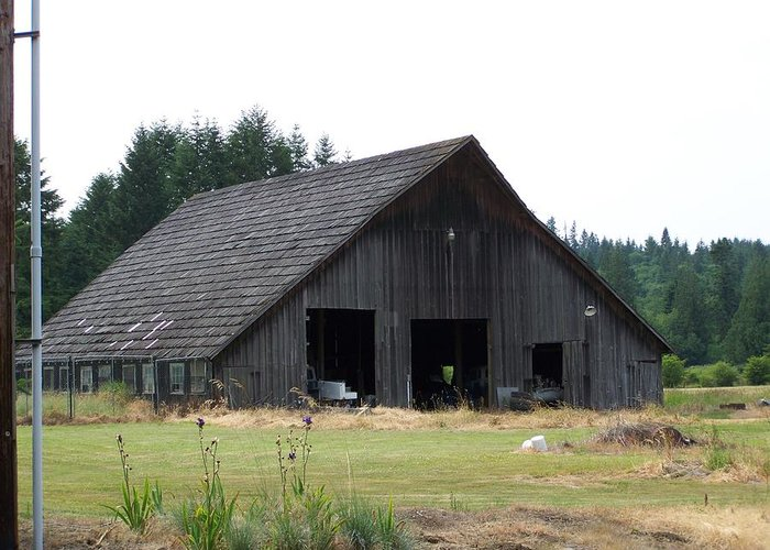 Barn Greeting Card featuring the photograph Gray Barn   Washington State by Laurie Kidd
