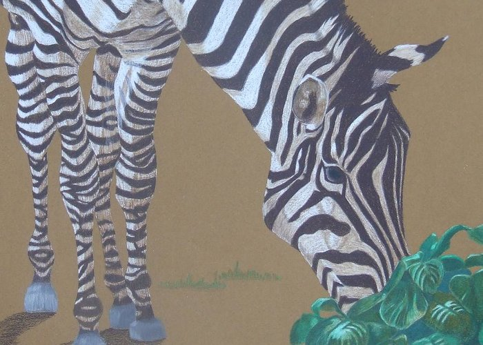Zebra Greeting Card featuring the painting Grazing At The Salad Bar by Anita Putman