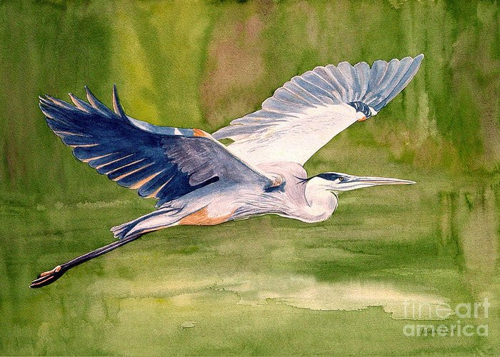 Heron Greeting Card featuring the painting Great Blue Heron by Pauline Ross