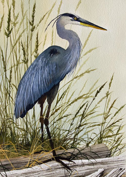 Artist James Williamson Images Greeting Cards