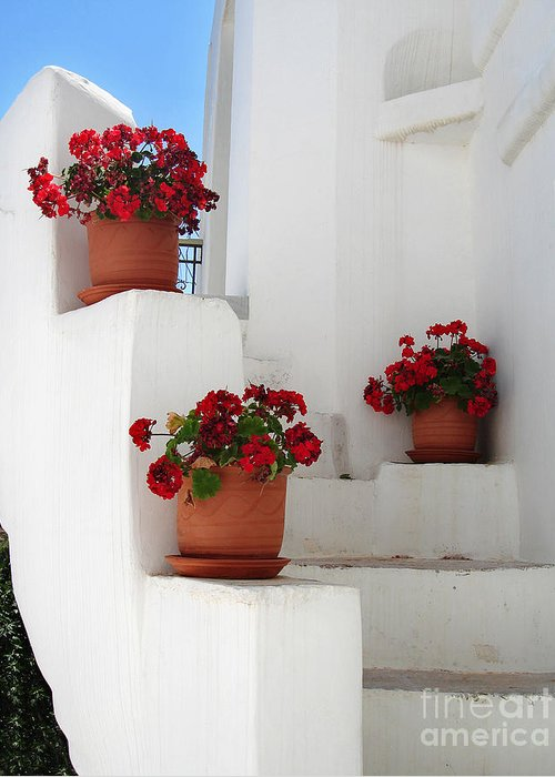 Aegean Greeting Card featuring the photograph Greek Steps by Jane Rix