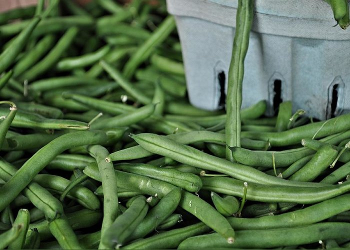 Greenbeans Greeting Card featuring the photograph Green Beans by William Jones