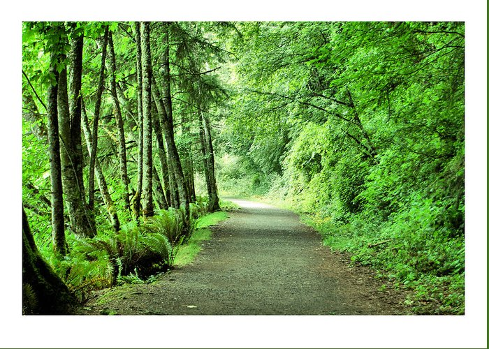 Green Greeting Card featuring the photograph Green Path by J D Banks