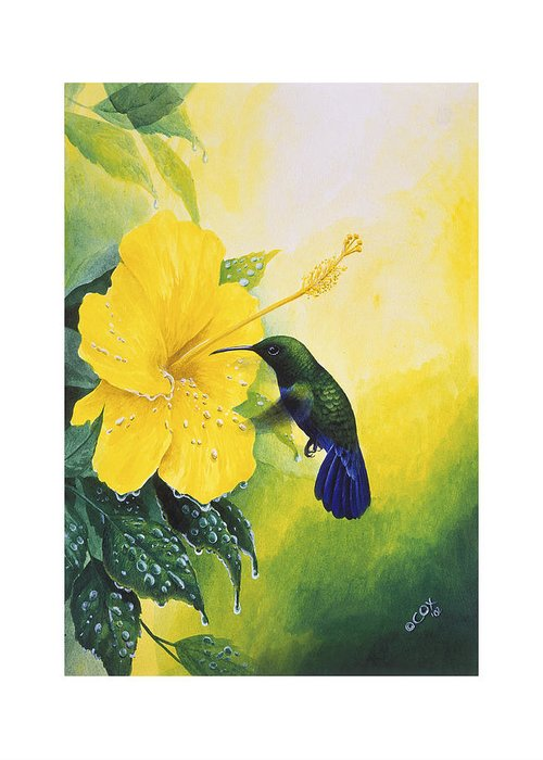 Chris Cox Greeting Card featuring the painting Green-throated Carib Hummingbird And Yellow Hibiscus by Christopher Cox
