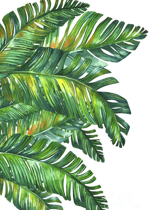 Summer Greeting Card featuring the digital art Green Tropic by Mark Ashkenazi
