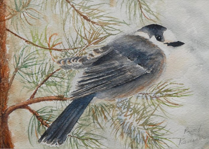 Bird Greeting Card featuring the painting Grey Jay by Ruth Kamenev