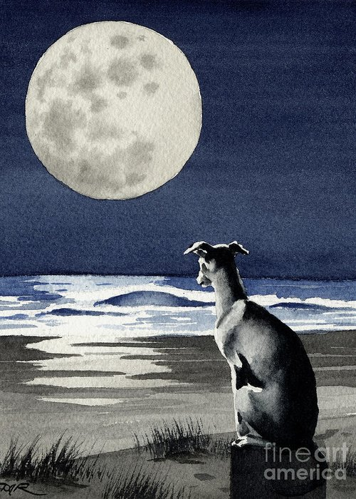 Greyhound Greeting Card featuring the painting Greyhound Under The Moon by David Rogers