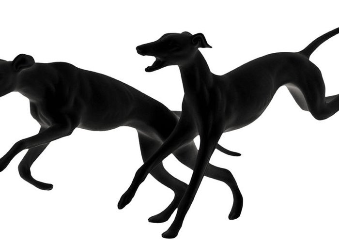 Sighthound Greeting Cards
