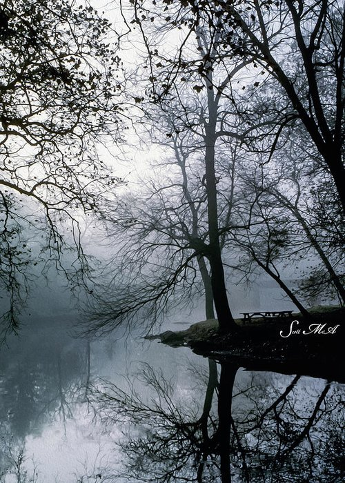 Grings Mill Recreation Area Greeting Card featuring the photograph Grings Mill Fog 1043 by Scott McAllister