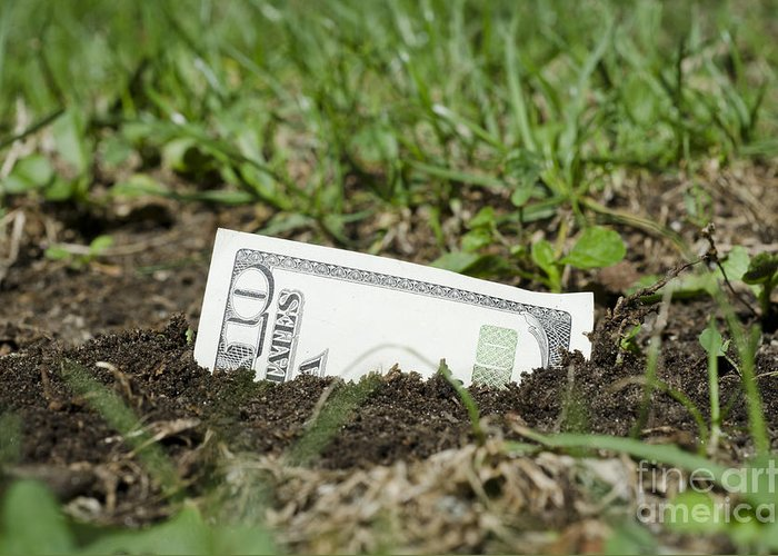 Money Greeting Card featuring the photograph Growing Money by Mats Silvan