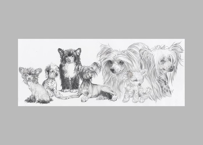 Toy Group Greeting Card featuring the drawing Growing Up Chinese Crested And Powderpuff by Barbara Keith