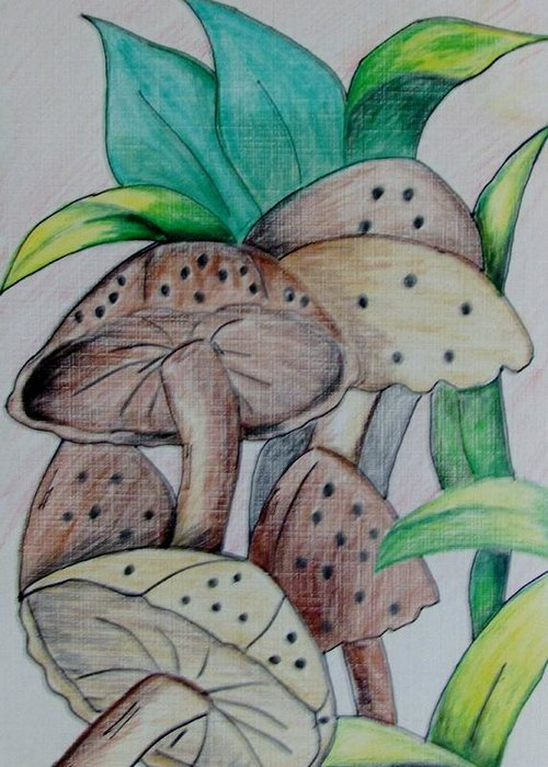 Mushrooms Greeting Card featuring the drawing Growing Wild by Nkese Miller