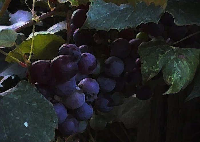 Grapes Greeting Card featuring the photograph Grrrrapes by Ross Powell