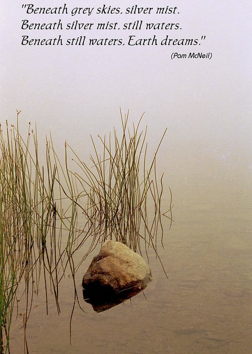 Fog Greeting Card featuring the photograph Haiku Poster by Roger Soule