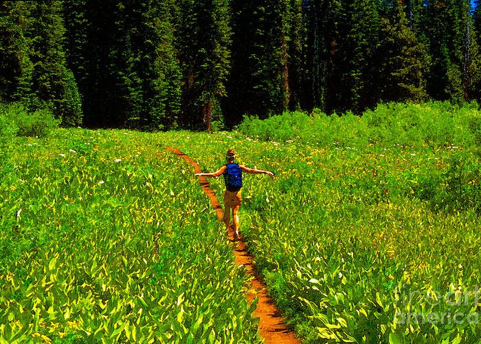 Hiking Greeting Card featuring the painting Happiness Is A Trail by David Lee Thompson