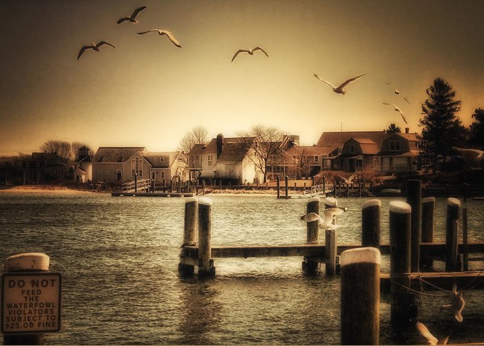 Cape Cod Greeting Card featuring the photograph Harbor View by Gina Cormier