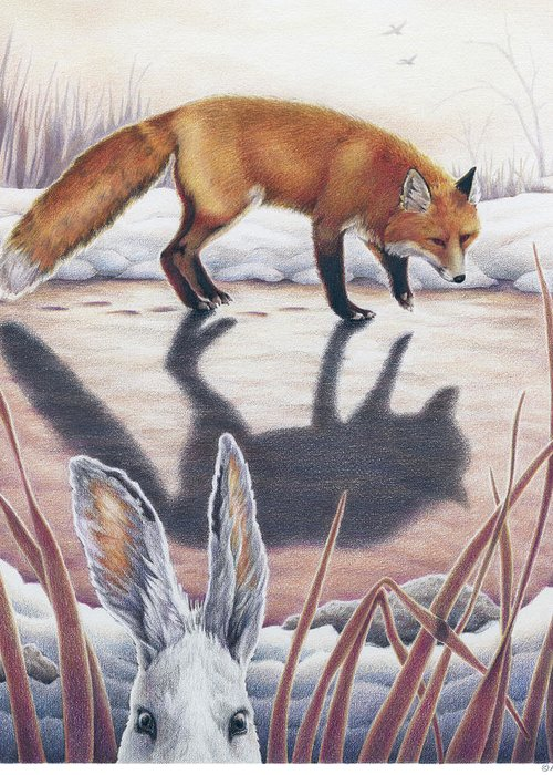 Fox Greeting Card featuring the drawing Hare Stands On End by Amy S Turner