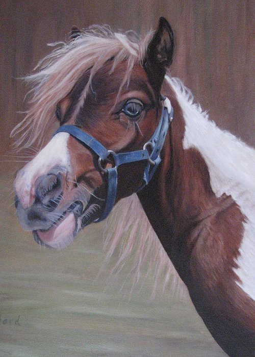 Horse Greeting Card featuring the painting Harlequin by Elizabeth Bard