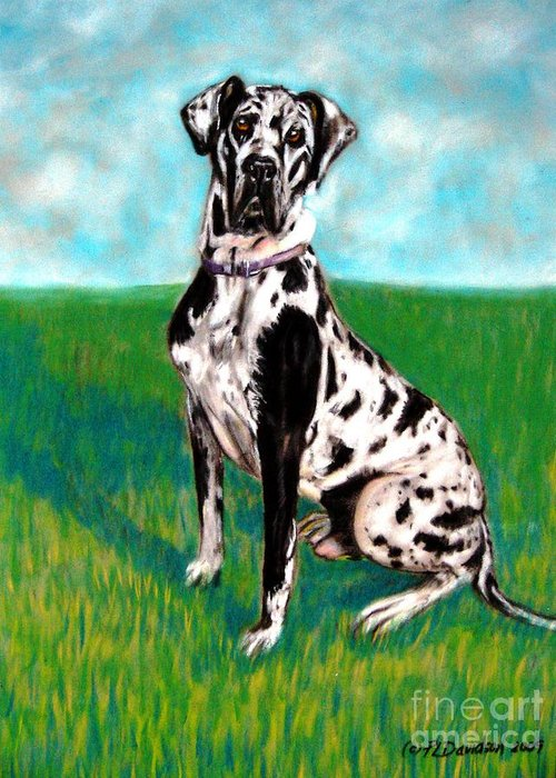 Large Dog Breeds Greeting Card featuring the painting Harlequin Great Dane by Patricia L Davidson