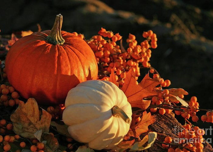 Autumn Greeting Card featuring the photograph Harvest Colors by Sandra Cunningham