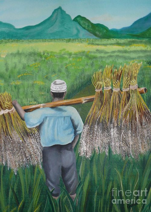 Landscape Greeting Card featuring the painting Harvest by Kris Crollard