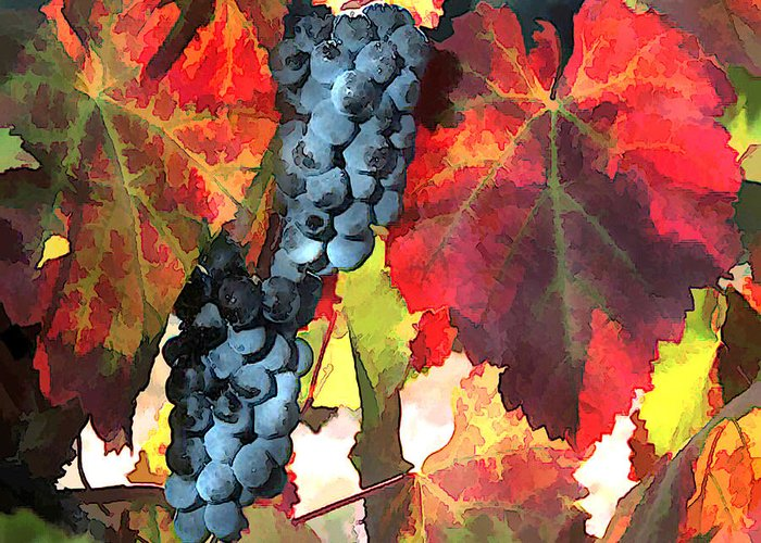 Wine Greeting Card featuring the painting Harvest Time Grapes And Leaves by Elaine Plesser