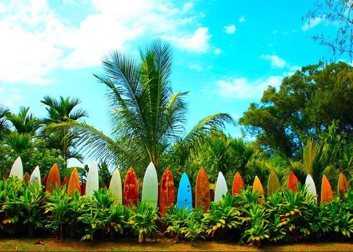 Greeting Card featuring the photograph Hawaii Surfboard Fence Photograph by Michael Ledray