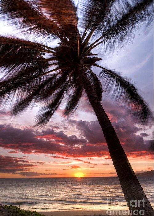 Hawaiian Sunset Greeting Card featuring the photograph Hawaiian Coconut Palm Sunset by Dustin K Ryan