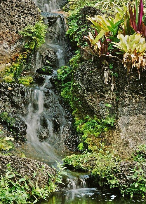 Waterfall Greeting Card featuring the photograph Hawaiian Waterfall by Michael Peychich