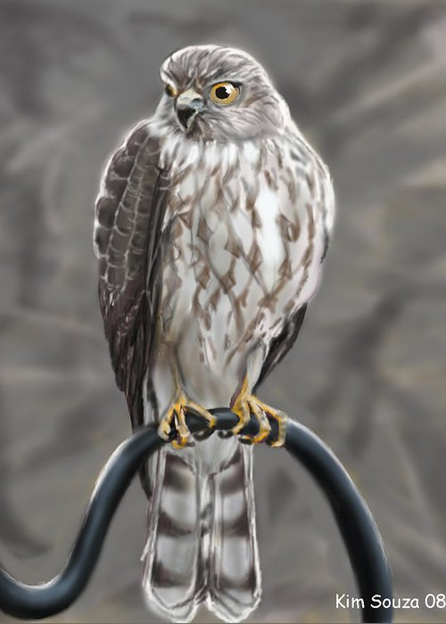 Birds Greeting Card featuring the painting Hawk by Kim Souza