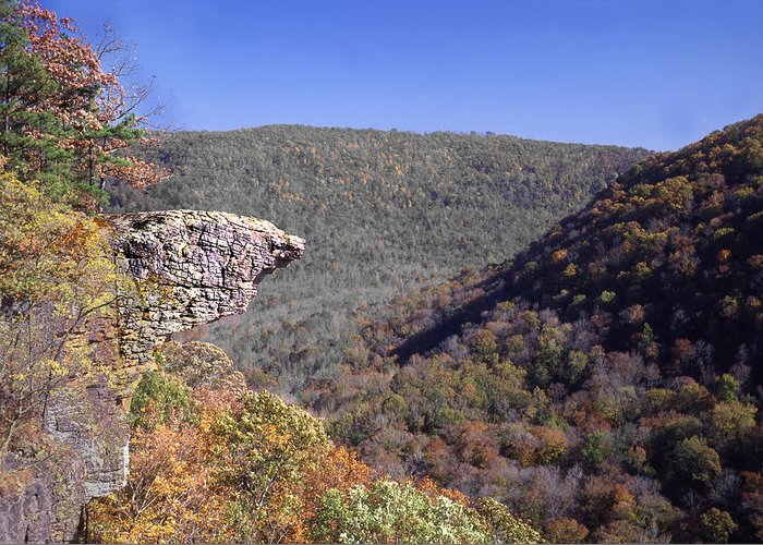 Hawksbill Crag Greeting Card featuring the photograph Hawksbill Crag by Curtis J Neeley Jr