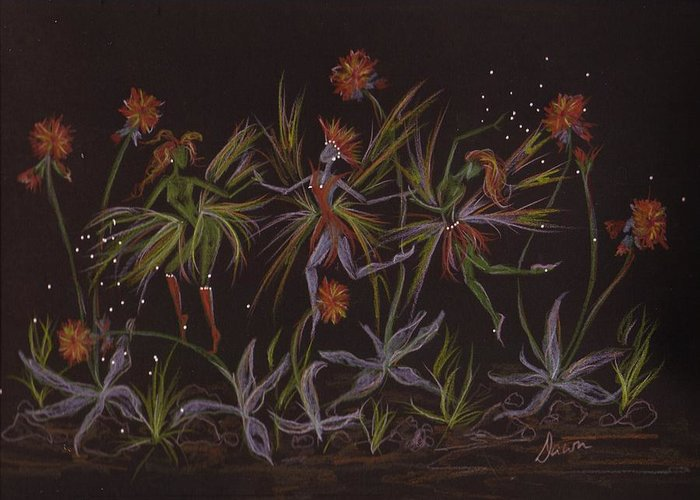 Fairies Greeting Card featuring the drawing Hawkweed Dance by Dawn Fairies