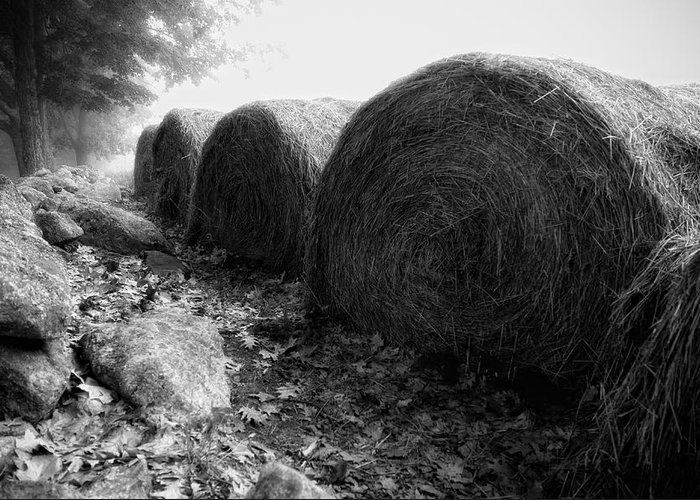 Hay Greeting Card featuring the photograph Hay Bales Paxton Ma by Richard Danek