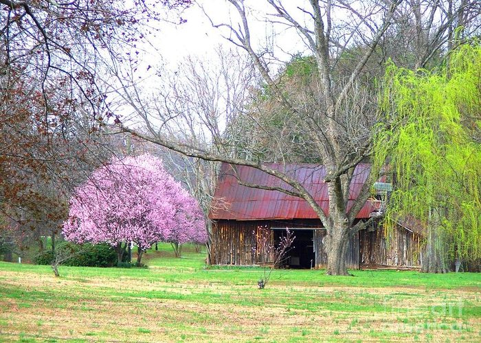 Pink Greeting Card featuring the photograph Hay Barn And A Touch Of Pink by Judy Waller