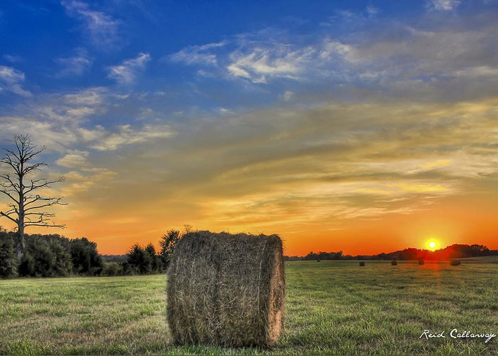 Round Haybale Greeting Cards