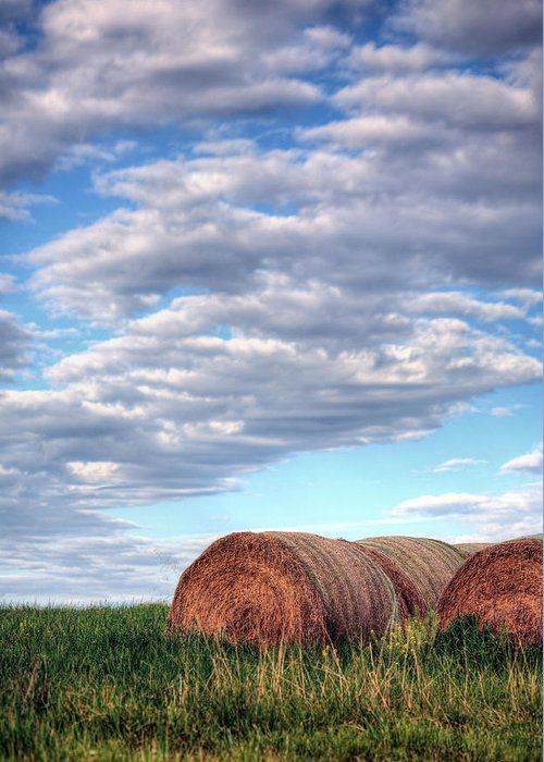 Hay Greeting Card featuring the photograph Hay It's Art by JC Findley