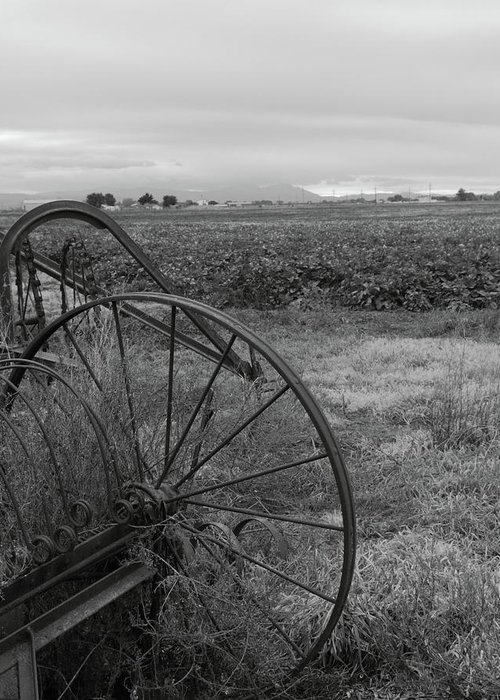 Abandoned Greeting Card featuring the photograph Hay Rakes San Joaquin County Ca by Troy Montemayor