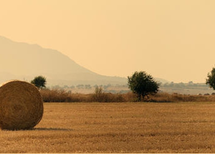 Agriculture Greeting Card featuring the photograph Hay Rolls by Stelios Kleanthous