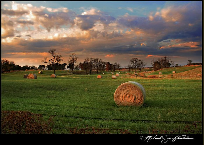 Landscape Greeting Card featuring the photograph Haybales At Dusk by Melinda Swinford