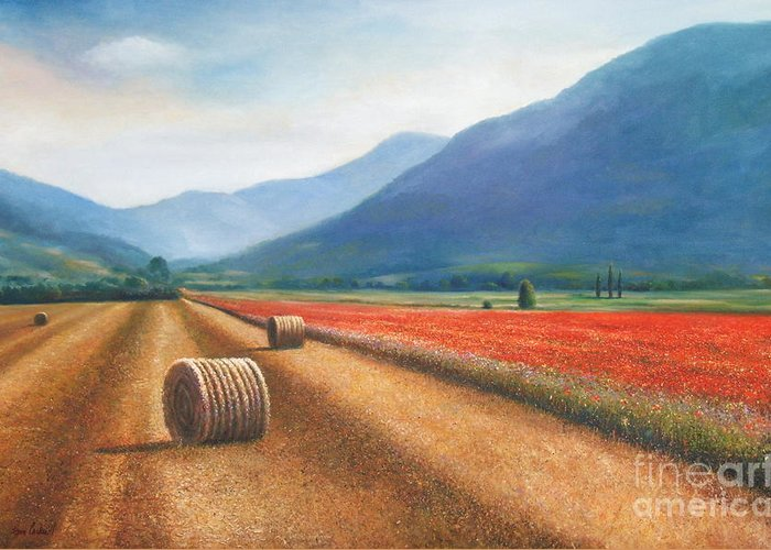 Poppies Greeting Card featuring the painting Haybales In Italy by Ann Cockerill