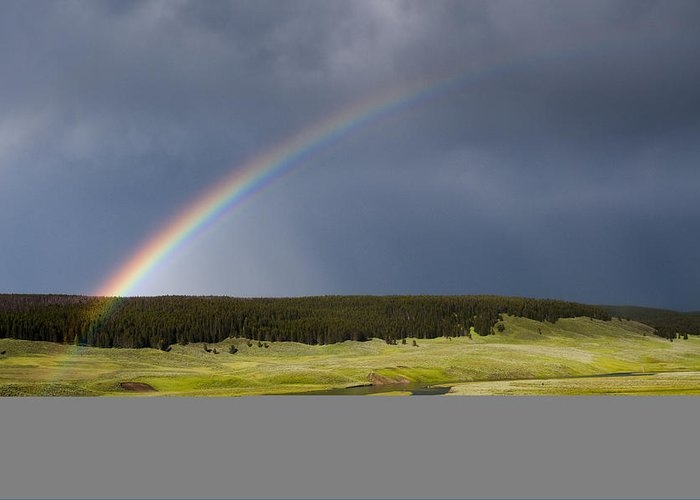Rainbow Greeting Card featuring the photograph Hayden Valley Rainbow by Chad Davis