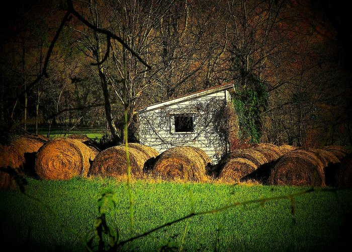 Farm Greeting Card featuring the photograph Hayroll Shed by Michael L Kimble